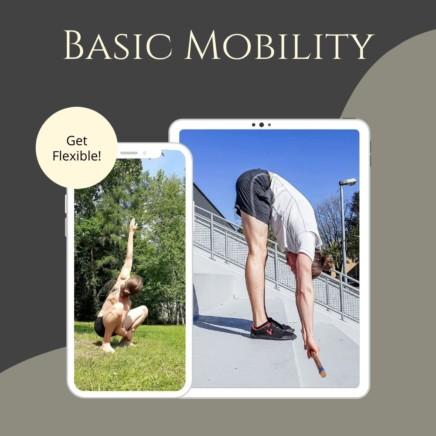 Basic Mobility Product Image