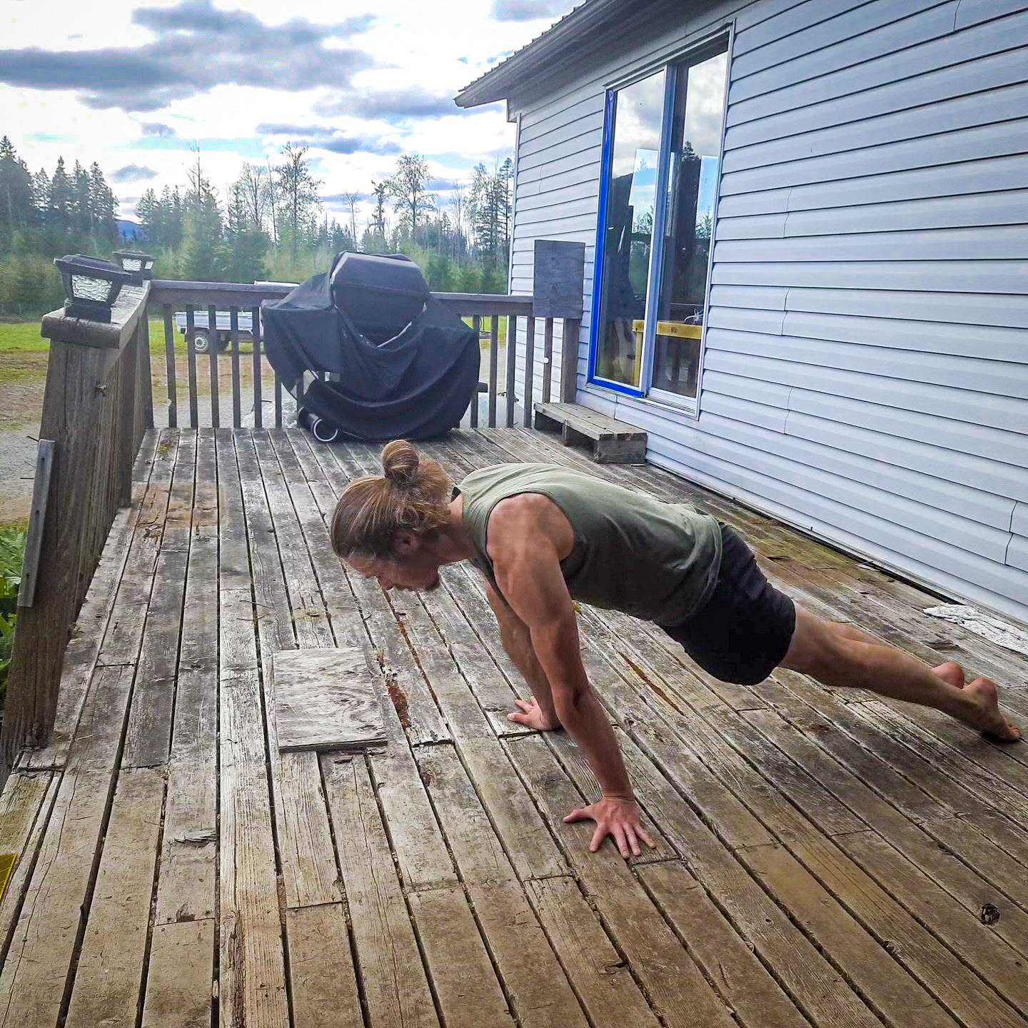 This image shows me performing planche lean, which is a straight arm strength movement.